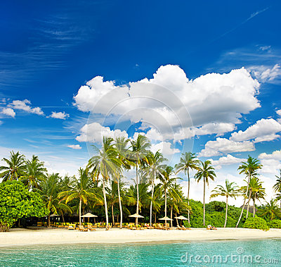 Tropical island beach with perfect blue sky