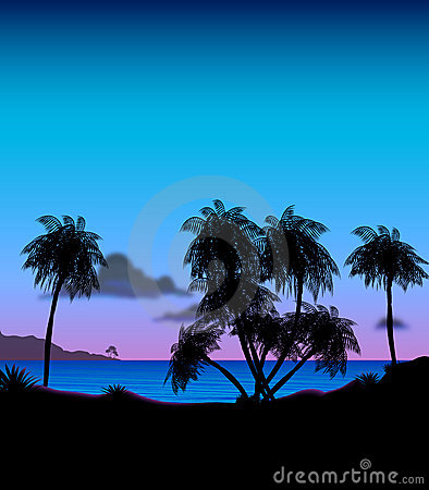 Tropical Island at Dusk Illustration