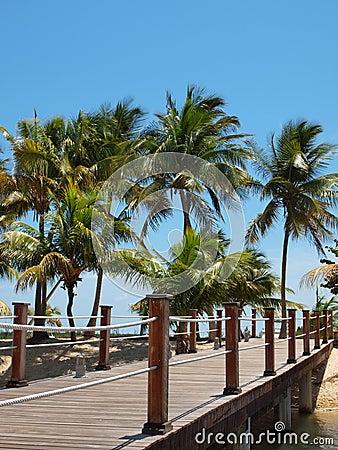Tropical Island Footbridge