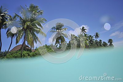 Tropical island with in the lagoon