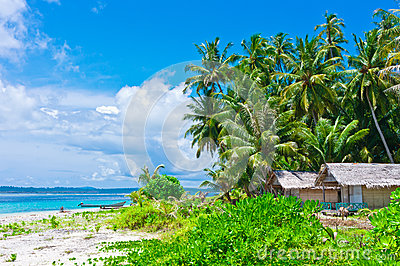 Tropical island landscape with huts