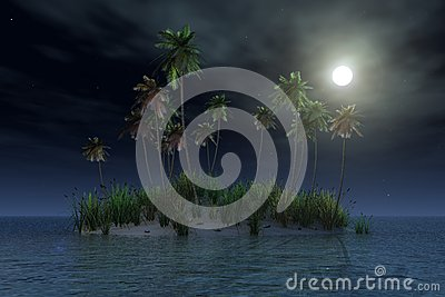 Tropical island by night