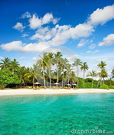 Tropical island palm beach with blue sky