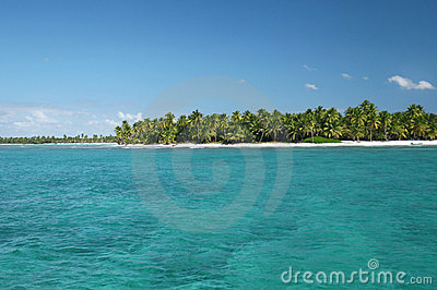 Tropical Island with Palm Trees in Ocean