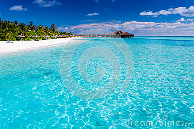 Tropical island with sandy beach with palm trees