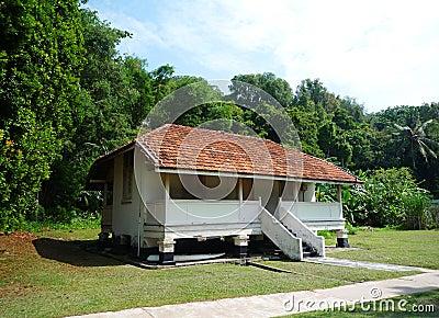 Tropical island style house