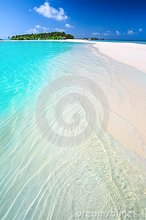 Free Tropical Island With Sandy Beach With Palm Trees And Tourquise Clean Water In Maldives Stock Image - 49097241