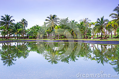 Tropical jungle of Koh Kho Khao reflected in the pond