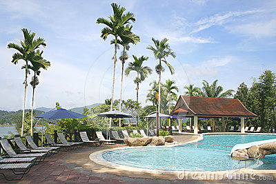 Tropical Jungle Pool