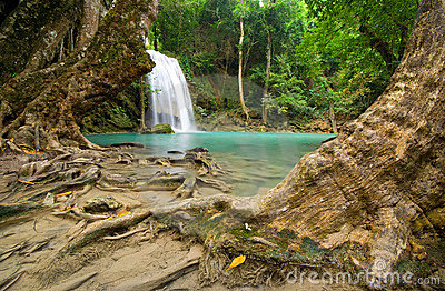 Tropical Jungle Waterfalls