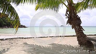 Tropical landscape view, Seychelles. Praslin island stock footage