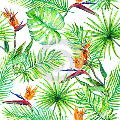 Free Tropical Leaves, Exotic Flowers. Seamless Jungle Pattern. Watercolor Stock Photo - 89746600