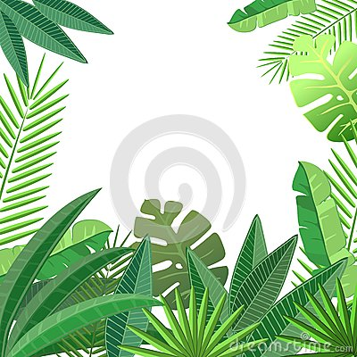 Free Tropical Leaves Floral Design Stock Photography - 47394702