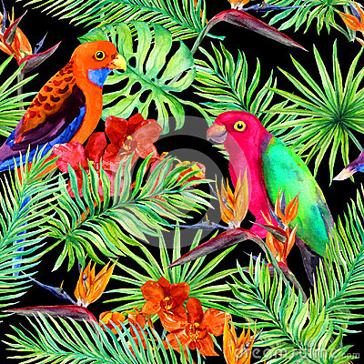 Free Tropical Leaves, Parrot Birds, Exotic Flowers. Seamless Jungle Pattern On Black Background. Watercolor Stock Photo - 98714580