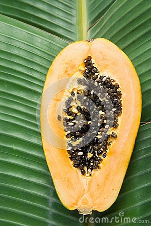 Free Tropical Nature Background Ripe Halved Papaya On Large Green Palm Leaf. Healthy Food Lifestyle Vitamins Summer Travel Vacation Stock Images - 114808304