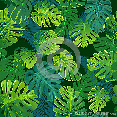 Free Tropical Palm And Monstera Leaves, Jungle Leaf Seamless Vector Floral Pattern Background. Stock Images - 95286704