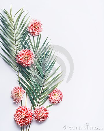 Free Tropical Palm Leaves And Exotic Flowers On White Desktop Background, Top View, Creative Layout With Copy Space Stock Image - 103694241