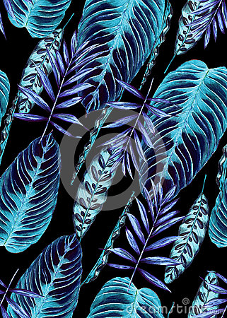 Tropical palm leaves background Stock Photo