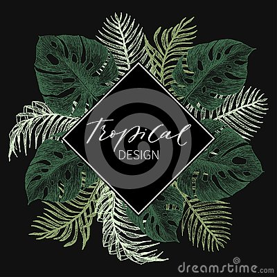 Free Tropical Palm Leaves. Jungle Round Illustration With Monstera, Coconut Leaves. Design Template. High Detailed Botanical Stock Photos - 122105033