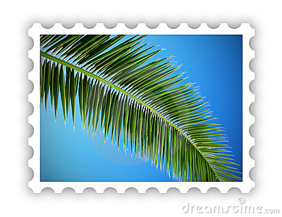 Tropical palm postage stamp