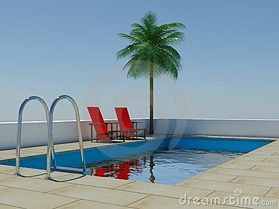 Tropical palm tree swimming pool