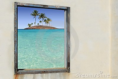Tropical palm trees paradise islands window
