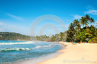 Tropical paradise beach with yellow sand