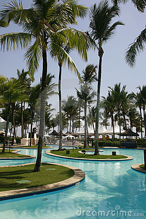 pool and palm trees in bahia, brazil