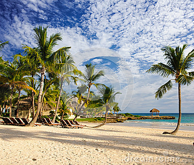 Tropical Paradise. Dominican Republic, Seychelles, Caribbean, Mauritius, Philippines, Bahamas. Relaxing on remote Paradise beach.