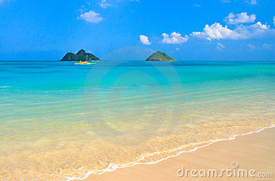 Tropical paradise, heavenly beach, Oahu Hawaii