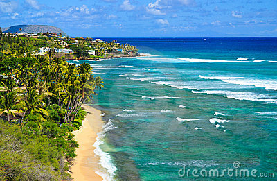 Tropical paradise, heavenly coast, Oahu Hawaii