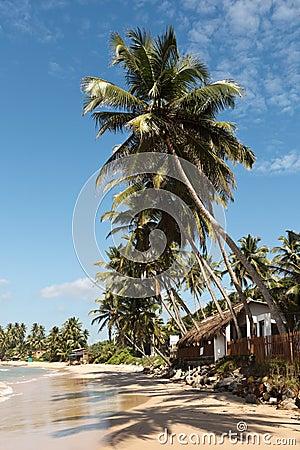 Tropical paradise idyllic beach