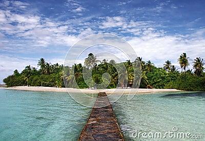 Tropical paradise island