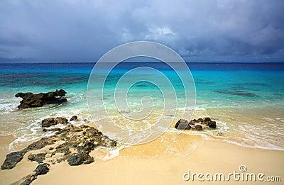 Tropical paradise island beach