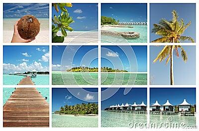 Tropical paradise island concept