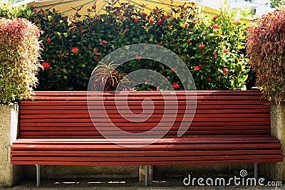 Tropical park bench