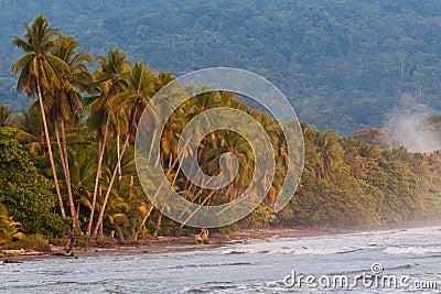Tropical pristine beach in Costa Rica
