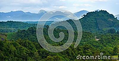 Tropical rain forests,Ratchapraph a National Park