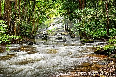 Tropical rainforest landscape with flowing river. Thailand