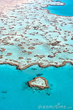 Tropical Reef, Australia