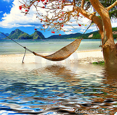 Free Tropical Relax Royalty Free Stock Photos - 9202108
