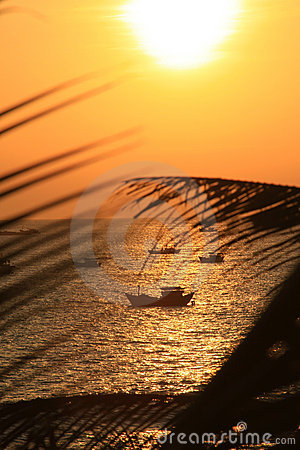 Tropical Resort Sunset