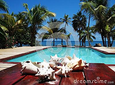 Tropical Resort Swimming Pool View