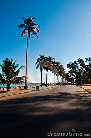 Tropical road of Maputo