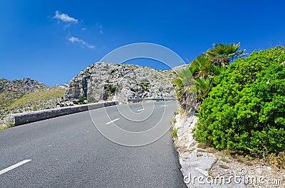 Tropical road curve