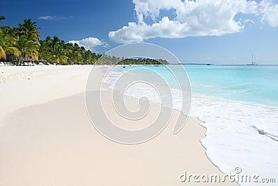 Tropical Sand Beach, Ocean