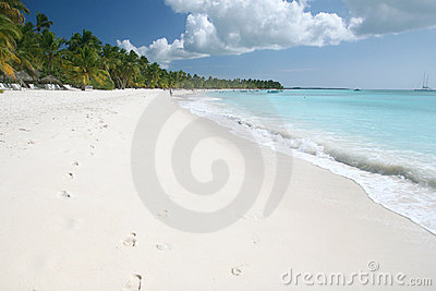 Tropical Sand Beach, Ocean