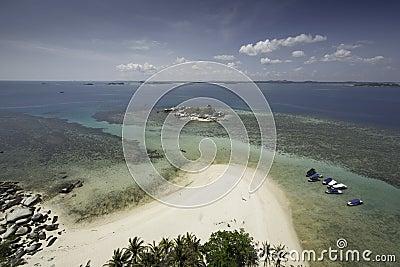 Tropical scene, sandy beach from birds eye view