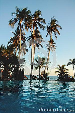 Tropical scenery on beach