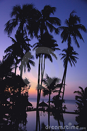 Tropical scenery on beach